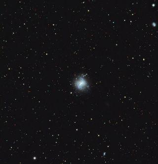 NGC 4214 Stargazer Photo