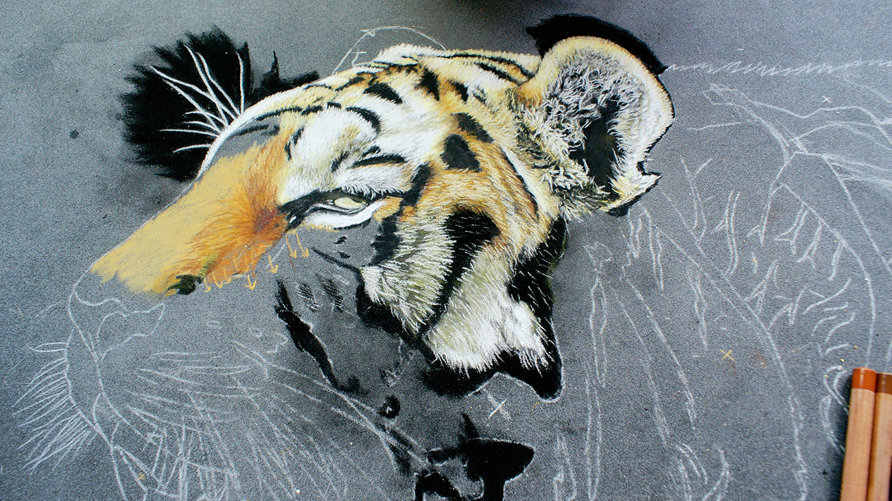 tiger painting half done