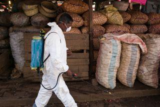 madagascar, plague, Antananarivo
