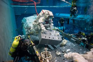 Astronauts Evaluate Ammonia Spacewalk Procedures