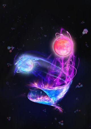 Quantum Computer Particle Zoo