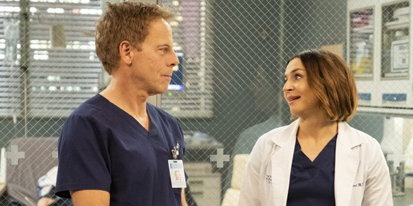 Grey's Anatomy Tom Koracick Greg Germann Amelia Shepherd ABC