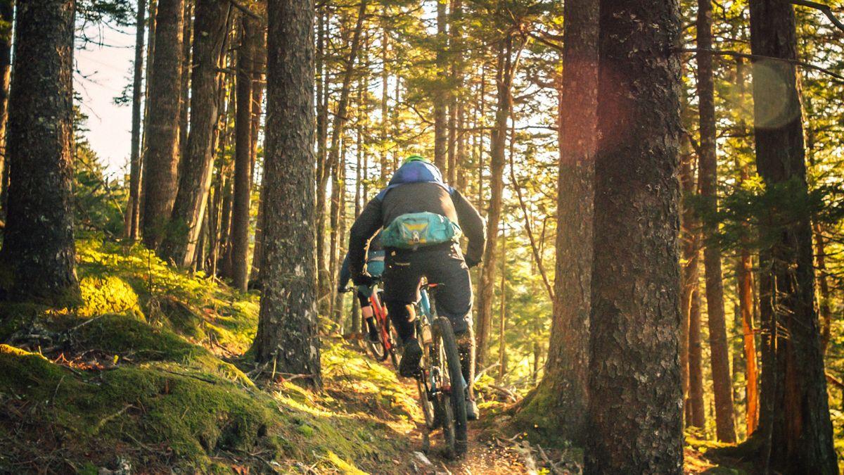 7 most popular UK mountain biking spots revealed