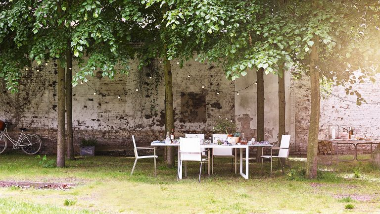 Large garden with patchy grass and dining table