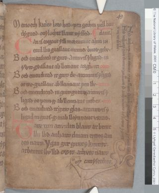 "A page (49r) of ""The Black Book of Carmarthen"" showing the stylized drawing of a dog and text in the margins."