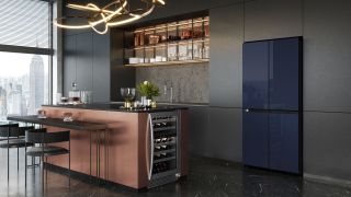 Samsung's new fridge is customizable for your home, here's why we like it