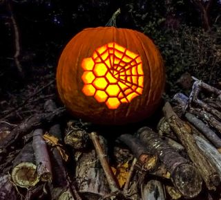 The James Webb Web level 3 pumpkin-carving template features the James Webb Space Telescope's giant golden mirror, which consists of 18 individual hexagons. Half of the pattern incorporates a spider web overlay, making it the most difficult of the carving templates.