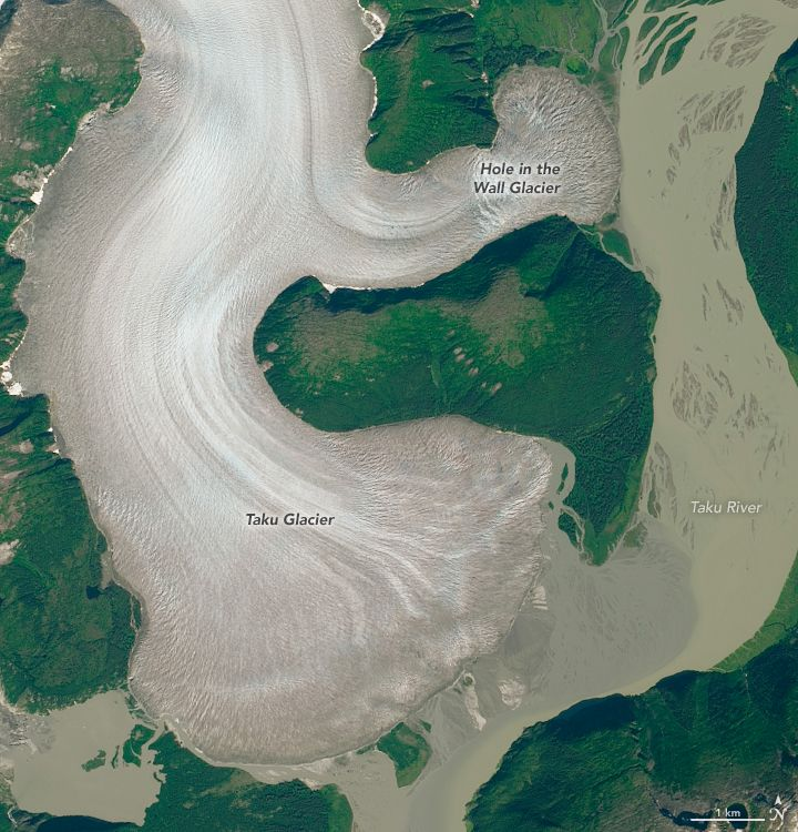 Taku Glacier in Alaska can be seen holding strong in this satellite image captured in August 2014. (Image: © NASA Earth Observatory)