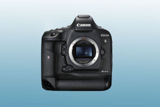 Canon EOS-1D X Mark III will shoot 6K uncropped?