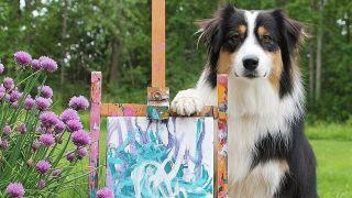 Secret the Australian Shepherd: Painting dog shows off latest creation