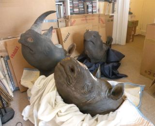 Mounted rhino heads federal agents say they found in the apartment of an antiques dealer who had pretended to assist in an investigation.