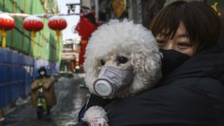 A Chinese woman holds her protective-mask-wearing dog in Beijing, China, on Feb. 7, 2020 in Beijing, China, amidst the outbreak of the new coronavirus.