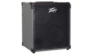 Peavey Max 300 bass amplifier