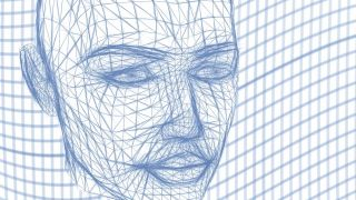 Face wireframe image