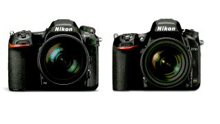 A Nikon D500 and Nikon D750 side by side