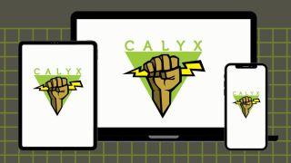 Calyx Institute logo