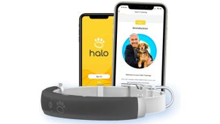 Halo dog collar is billed as the Apple Watch for dogs and consists of a smart collar and app