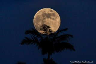 2013 Harvest Moon Over Maui, HI