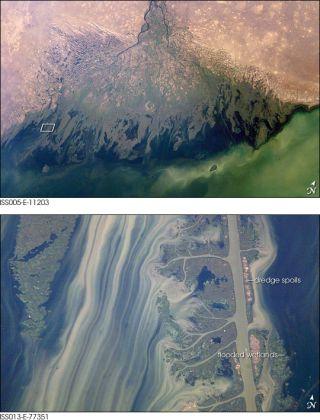 volga river delta, caspian sea