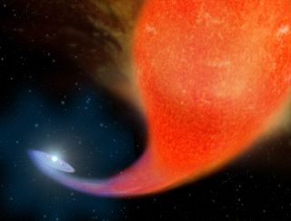 This artist's illustration depicts the birth of a blue straggler star as it siphons off material from a companion red giant star.