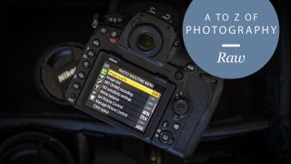 how to turn a raw file into jpeg