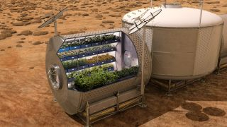 An artist's depiction of growing vegetables on Mars.