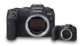 Canon mirrorless cameras to be shrunk, but why would Canon want to?