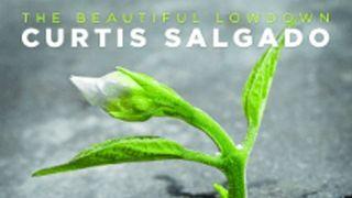 Curtis Salgado: The Beautiful Lowdown artwork