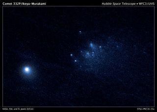 Comet 332P/Ikeya-Murakami image