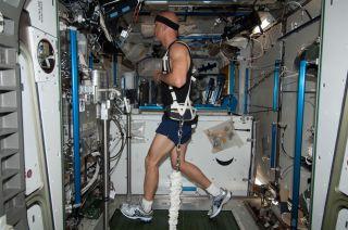 Astronaut Luca Parmitano on ISS Treadmill