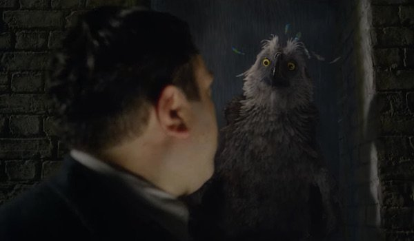 Owl creature in Fantastic Beasts: The Crimes of Grindelwald