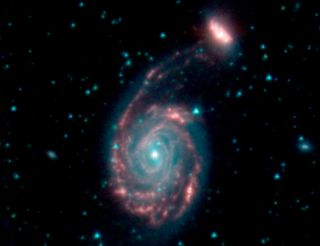 The merging galaxies NGC 7752 (larger) and NGC 7753 (smaller), collectively called Arp 86. Blue and green represent wavelengths of light strongly emitted by stars, while red shows a wavelength mostly emitted by dust.