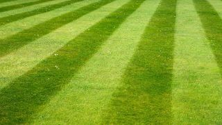How to create lawn stripes