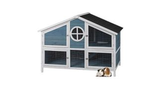 Pets at Home Foxglove Guinea Pig and Rabbit Hutch