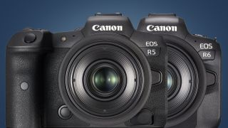 Les Canon EOS R5 et EOS R6 évoluent