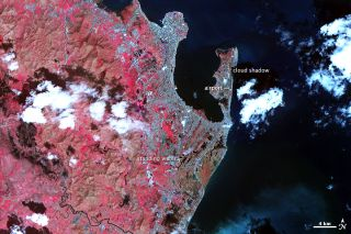 Haiyan aftermath