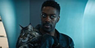 """Star Trek: Discovery"" season three's Grudge (played by a cat named Leeu) could be the coolest cat in sci-fi since Jones in ""Alien."""