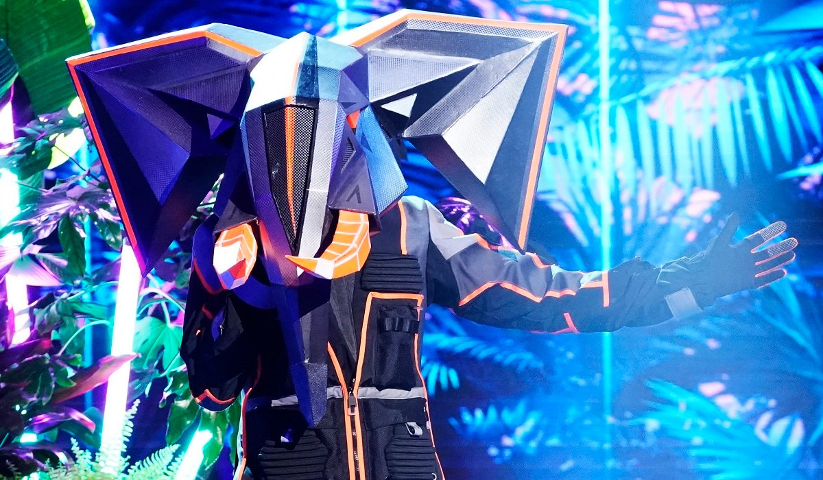 The Elephant The Masked Singer Fox