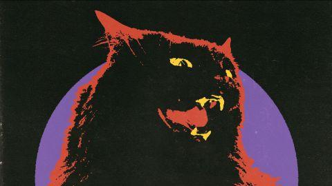 Danko Jones' Wildcat cover art