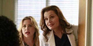 Arizona and Nicole Herman Grey's Anatomy ABC