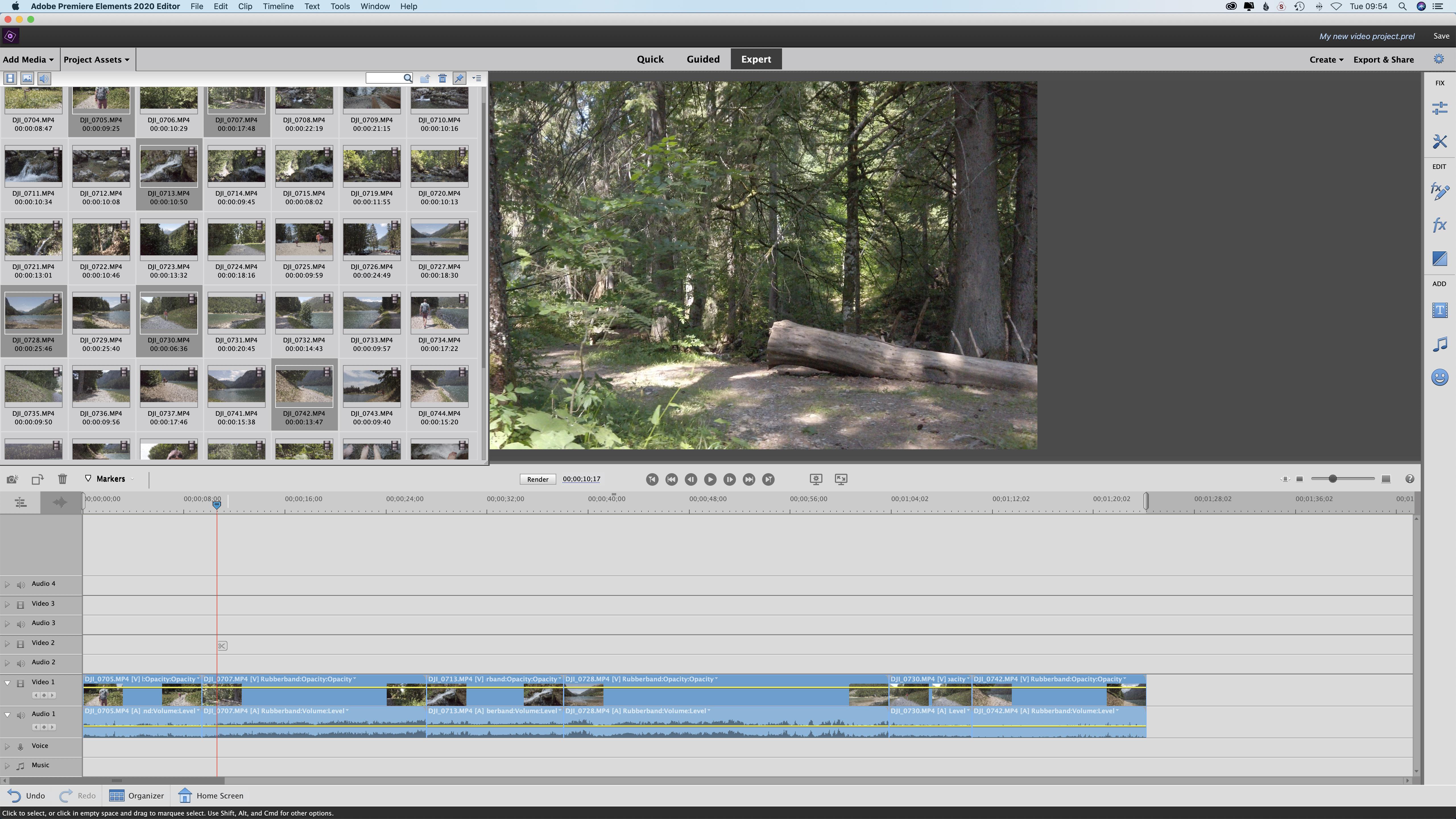 Adobe Premiere Elements 2019 Windows /& Mac No Subscription Required