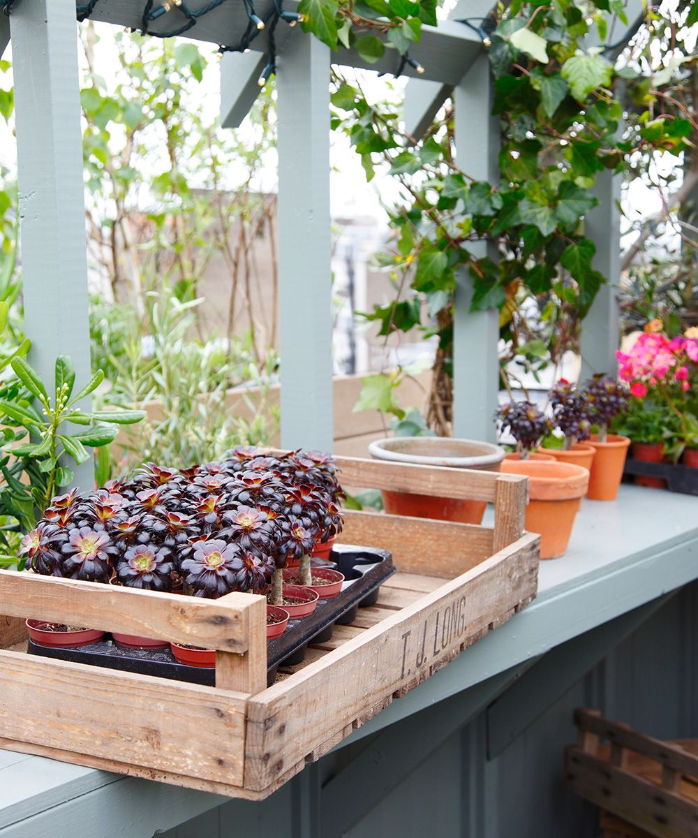 How to turn a small garden into a self-sufficient space