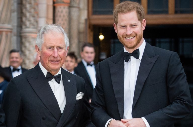 prince harry prince charles everyone talking throwback photo