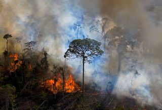 Wildfires in the Amazon are polluting the air with greenhouse gases faster than the surviving trees can absorb it.