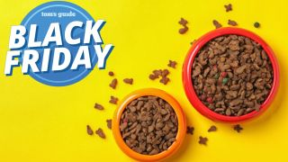 Best black friday pet deals