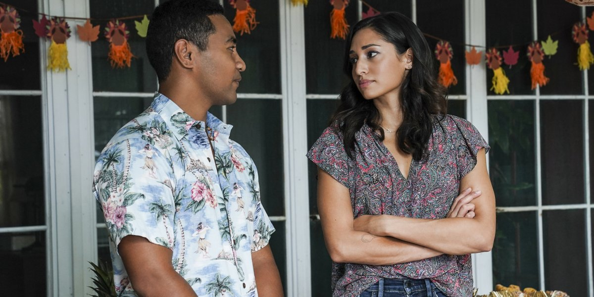 Sounds Like Hawaii Five-0 Finally Has Good News For Tani And Junior Fans