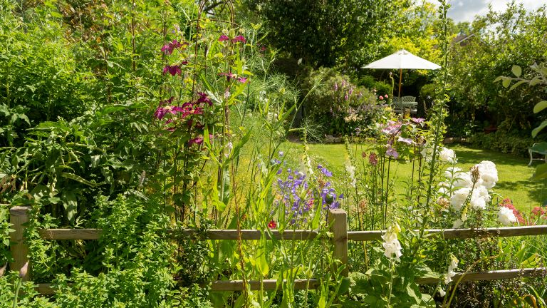 garden in Bath with chair and table in summer