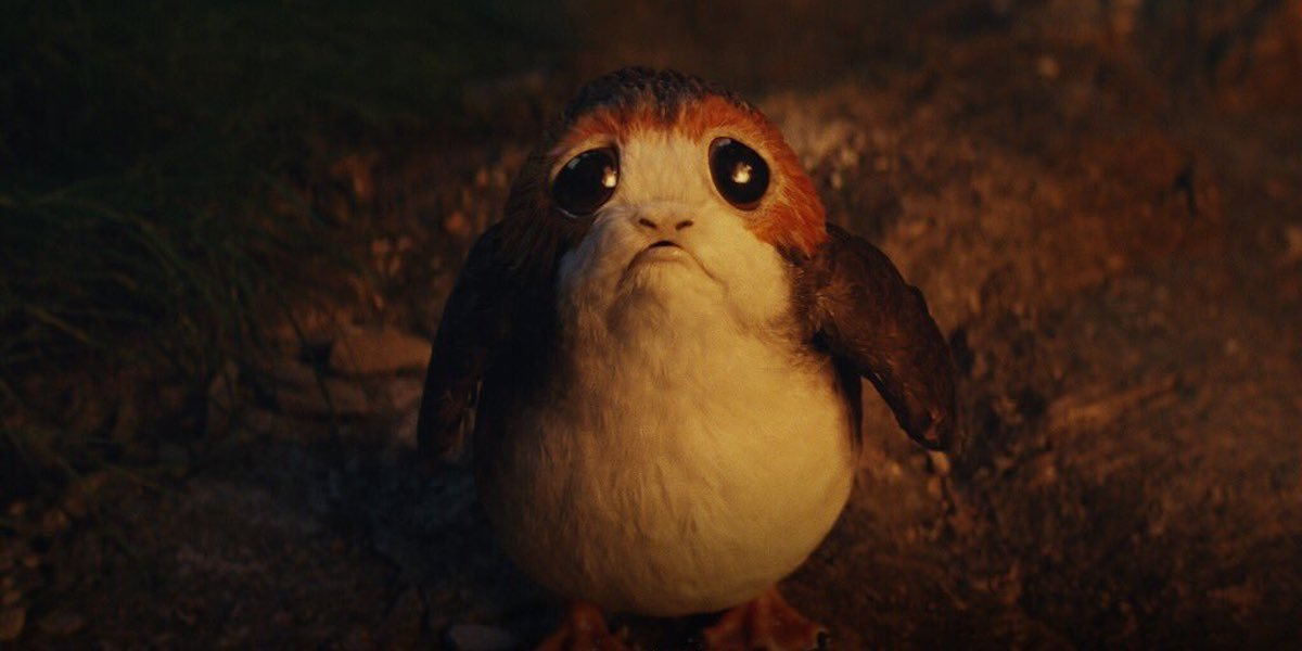 Porg in Star Wars: Rise of Skywalker