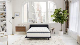 Winkbeds mattress deals sales