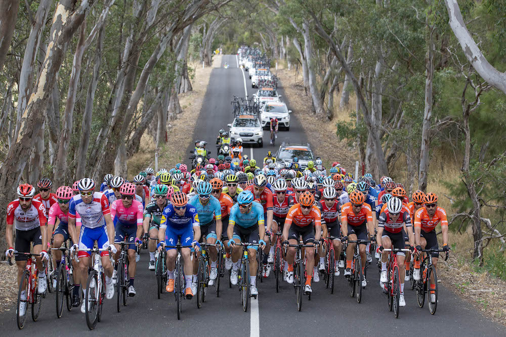 Watch: Tour Down Under 2019 stage two highlights